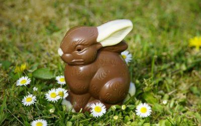 novocal wünscht frohe Ostern!